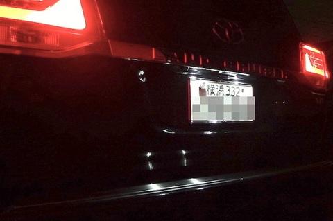 ランクル200(後期/ビッグマイナーチェンジ)LED(SMD5050)ナンバー灯/ランドクルーザー