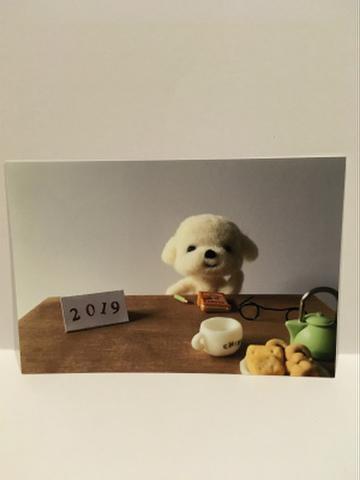 2019ポストカード横