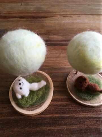 羊毛の森マルチーズ(夏)