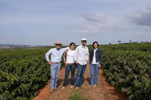 ブラジル Bau農園 ドライオンツリー【200g】