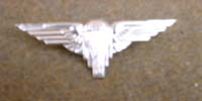 WW2自由フランス軍★Para Cap Badge