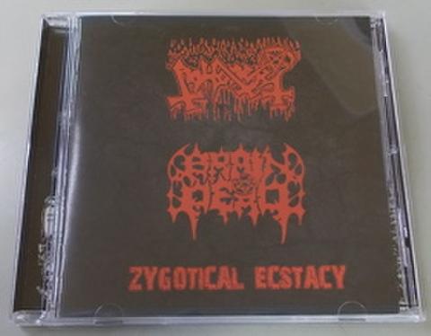Abhorer/Brain Dead - Zygotical Ecstacy CD