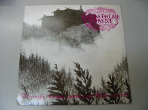 Carpathian Forest/Dark Funeral - split LP(中古)