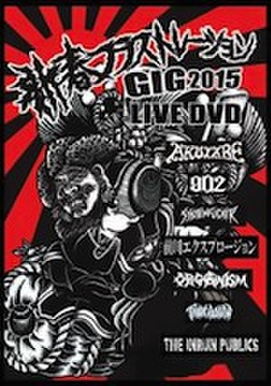 ■VA//新春フラストレーションGIG2015(DVD)