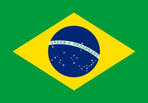 ブラジル W  中煎り