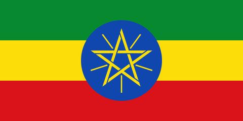 エチオピア イルガチェフ W  浅煎り