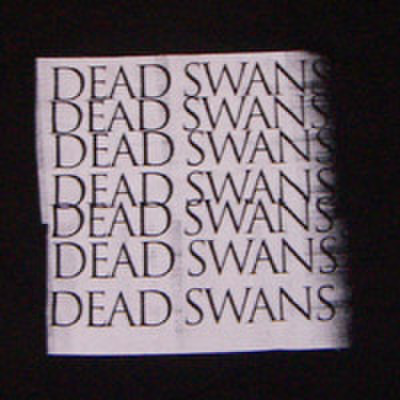 DEAD SWANS photo copy logo