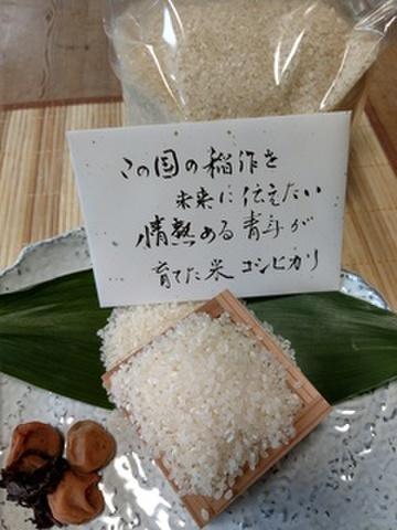 お米セット7.2㎏(1.8㎏ x 2袋)(1.8㎏ x 2袋 )