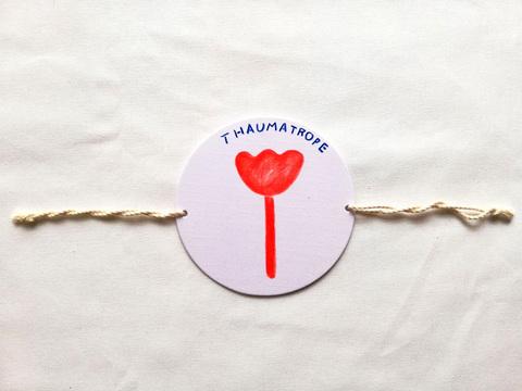 Thaumatrope3 ソーマトロープ フラワー