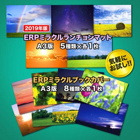 ERPミラクルセット[ERPランチョンマット2019&ブックカバーセット13枚♪]