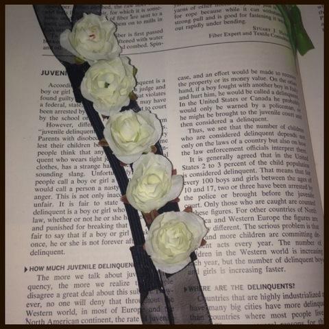 白薔薇の妖精