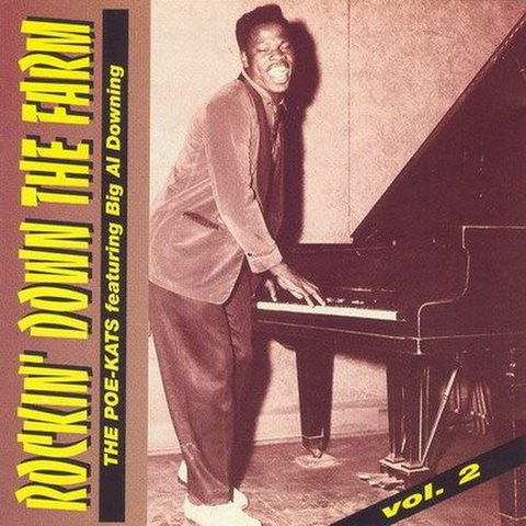 BIG AL DOWNING / ROCKIN' DOWN THE FARM VOL.2 (CD)