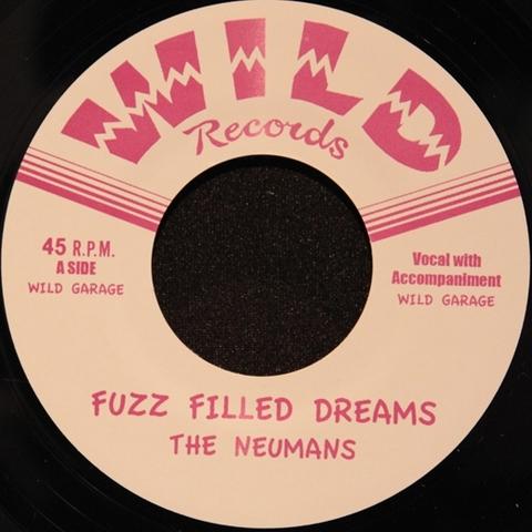 NEUMANS / FUZZ FILLED DREAMS (EP)