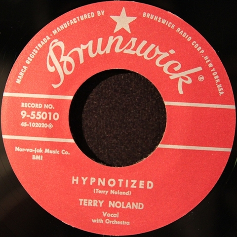 "TERRY NOLAND / HYPNOTIZED (7"")"