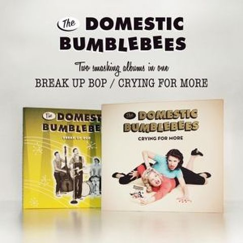 DOMESTIC BUMBLEBEES / BREAK UP ; CRYING FOR MORE (CD)