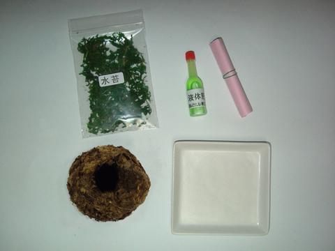 天然苔玉セット