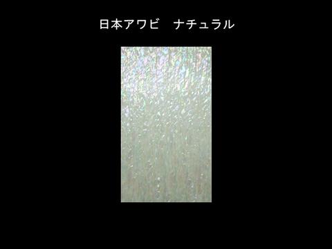 日本アワビ Mサイズ