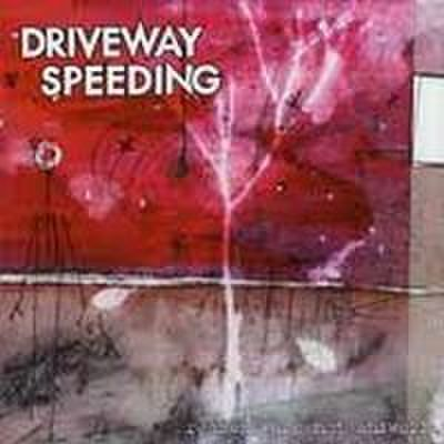 Driveway Speeding - Reasons Are Not Answers (CD)