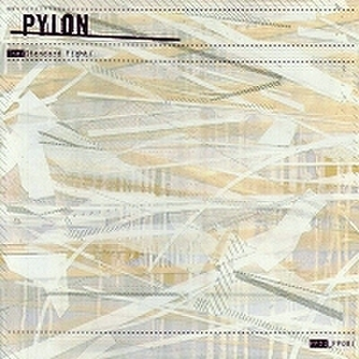 fix-12 : Pylon - The Standard Fight (2CD+1CD-R)