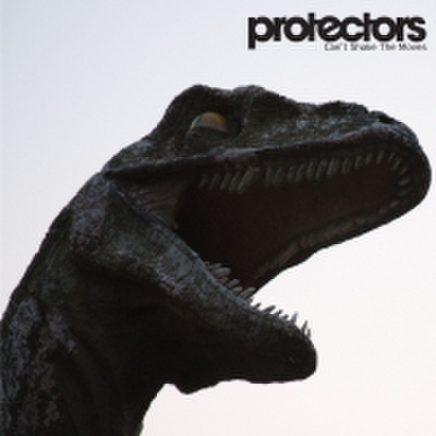 fix-36 : Protectors - Can't Shake The Moves (CD)