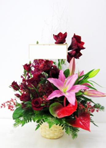 G-F0051 贈答・祝花