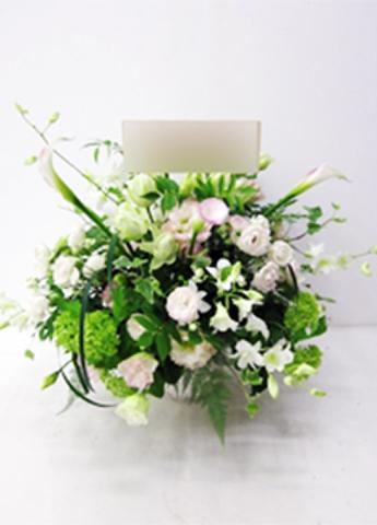 G-F0052 贈答・祝花