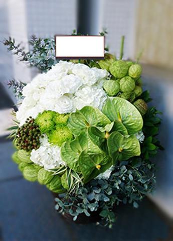 G-F0088 贈答・祝花