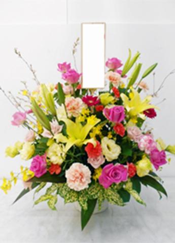 G-F0053 贈答・祝花