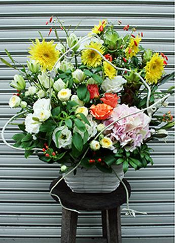 G-F0042 贈答・祝花