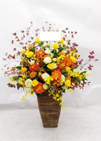 G-F0057 贈答・祝花
