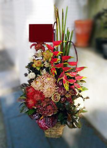 G-F0070 贈答・祝花
