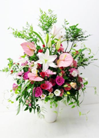 G-F0055 贈答・祝花