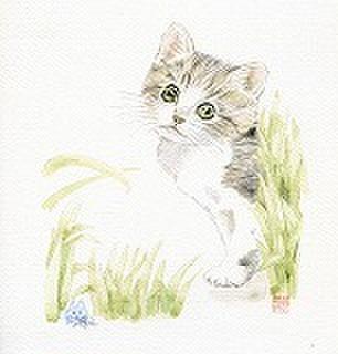 仔猫201205