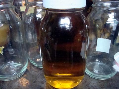 ツルニンジン酒 天然物 送料無料 1800ml 酒のみの濾した物
