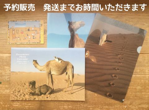 【予約】hanamomo セット【カレンダー・クリアファイル2枚・Thankyouポストカード】