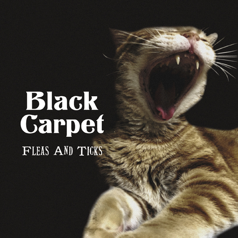 CD [ Black Carpet / Fleas And Ticks ]