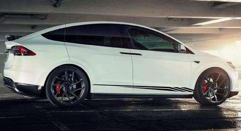 グラフィック デカール ステッカー 車体用 / テスラ モデル3 モデルX モデルY モデルS / ニューデザイン・ステッカー
