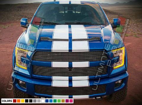 グラフィック デカール ステッカー 車体用 / フォード F-150 ラプター / フルボディ ストライプキット