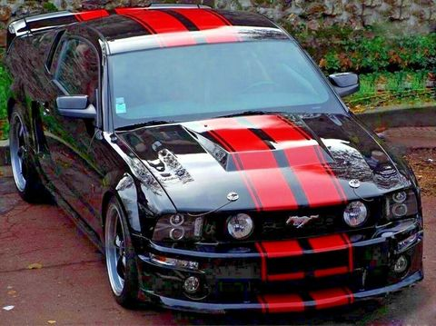 グラフィック デカール ステッカー 車体用 / フォード マスタング  5th 2005 2006 2007 2008 2013 / ストライプステッカー ボディキット