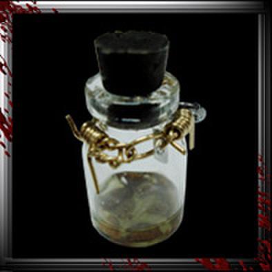 JC005/人体小瓶/ 糞尿ウジ湧き