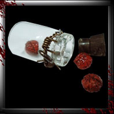 JC006/人体小瓶/ 脳味噌3人分