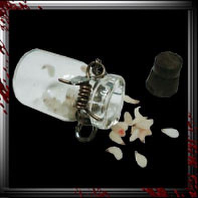 JC008/人体小瓶/ 蛆