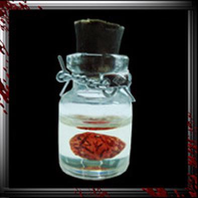 JC001/人体小瓶/ 脳ホルマリン漬け/クリアー