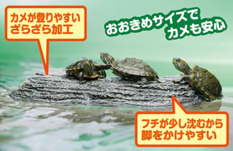 カメの浮島【M】 〔スイサク〕