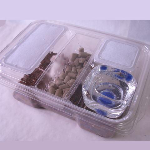 マウス飼育ケージ(簡易用)