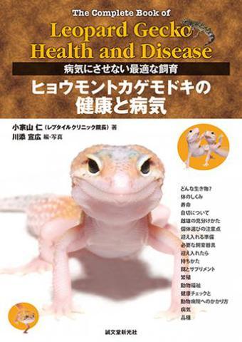 ヒョウモントカゲモドキの健康と病気