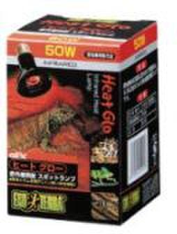 ヒートグロー50w 〔エキゾテラ〕