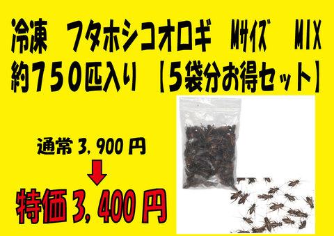 冷凍 フタホシコオロギ Mサイズ MIX(約750匹入り) 【5袋分お得セット】 『冷凍品の為送料+216円かかります』り