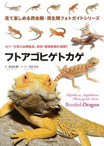 見て楽しめる爬虫類・両生類フォトガイドシリーズ『フトアゴヒゲトカゲ』
