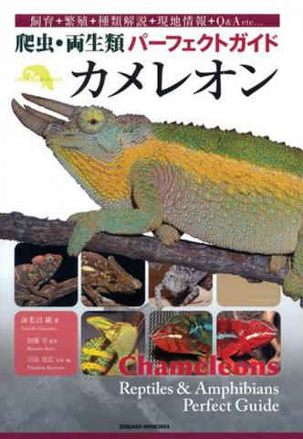 爬虫・両生類パーフェクトガイド カメレオン